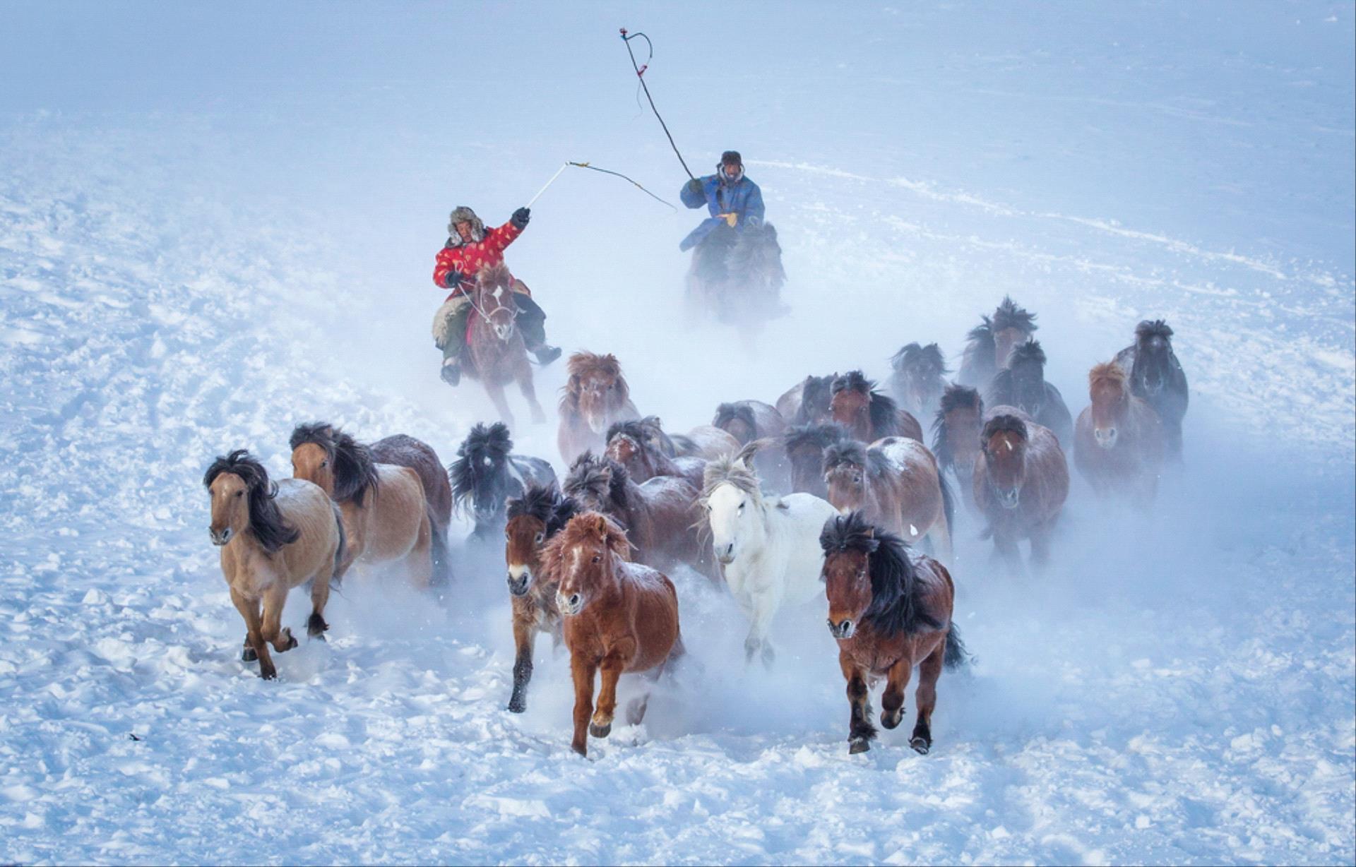 IUP HM - Yongan Gan (China)  Riding