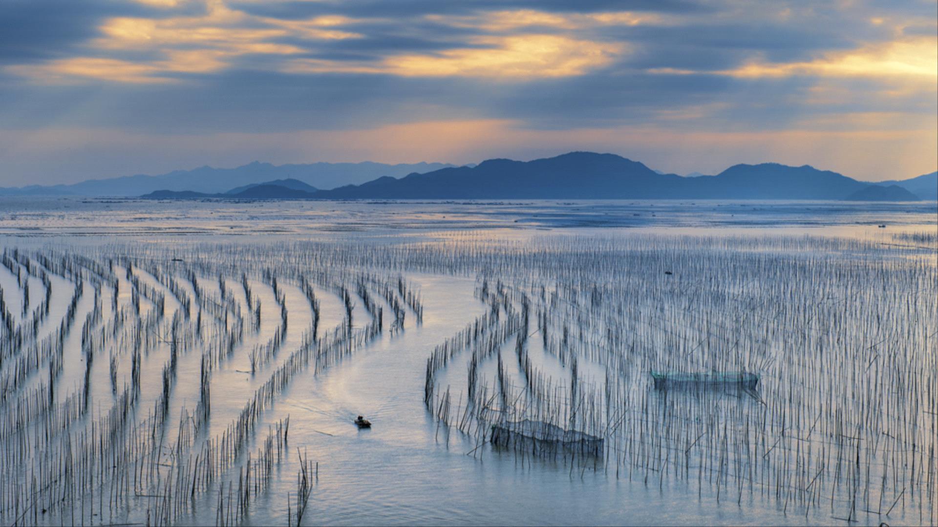 DIPA Merit Award - Jianhua Wang (China)  Fishing Village