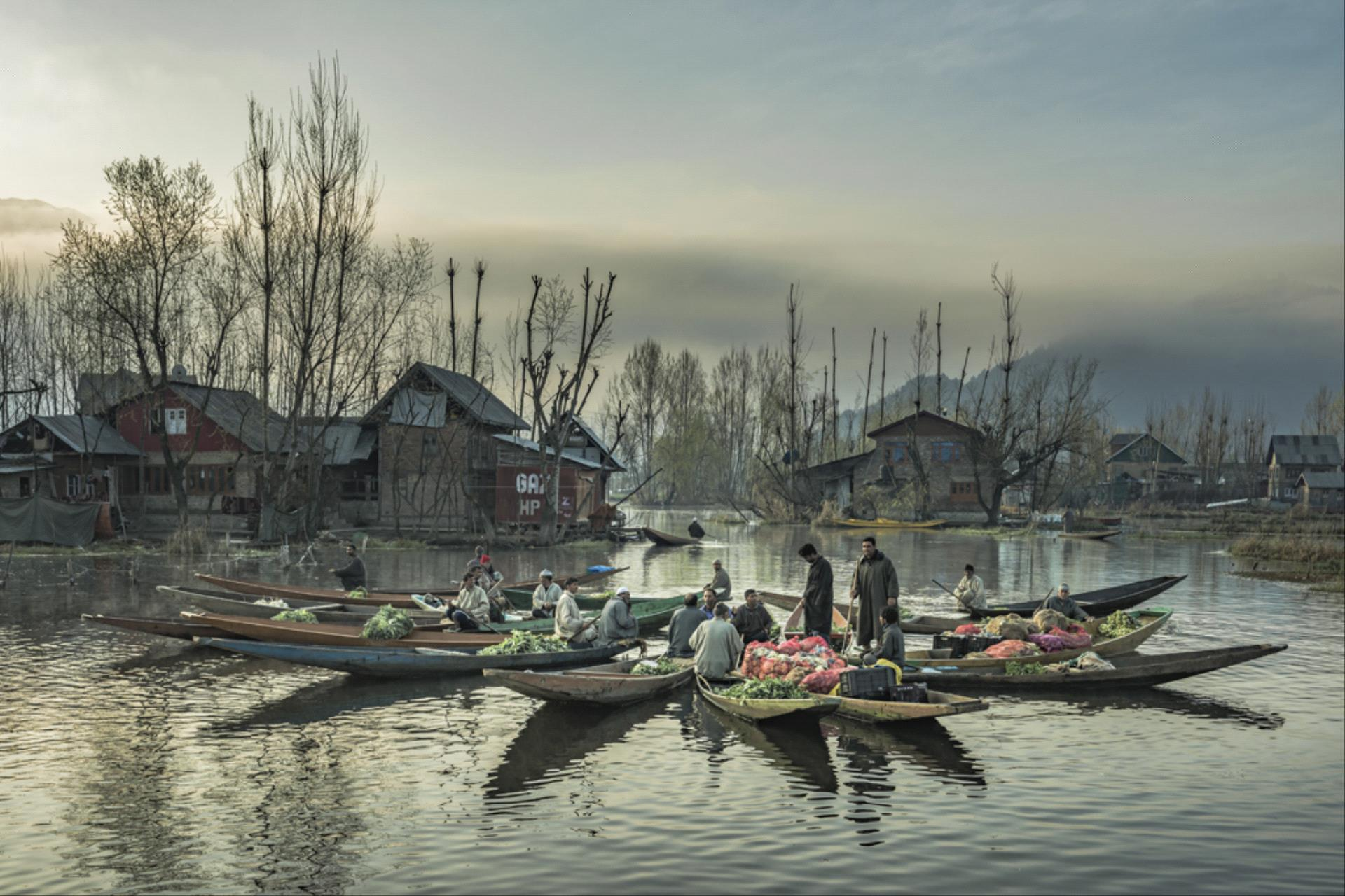 RPS Ribbons - Hongbing Ye (China)  Floating Market