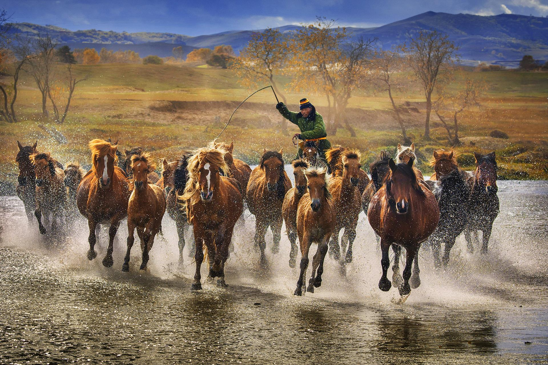 PhotoVivo Honor Mention - Mi Yee Mariana Poon (Hong Kong)  Flipping Horses Crossing River