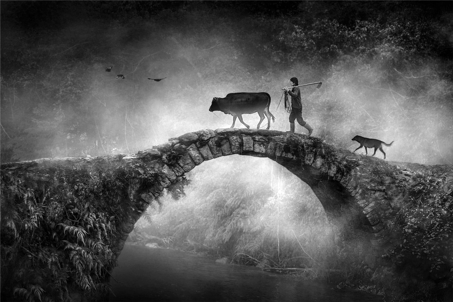 PhotoVivo Gold Medal - Ruiyuan Chen (China)  The Ancient Bridge