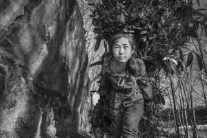 PhotoVivo Gold Medal - Yan Zhang (China) <br /> Little Master