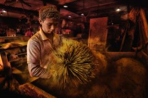PhotoVivo Gold Medal - Lee Eng Tan (Singapore)  Incense Maker