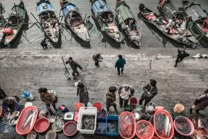 DIPC Bronze Medal - Aihua Cao (China) <br /> Fish Market