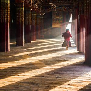 DIPC Silver Medal - Lin Zhang (China)  Monk