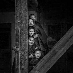 DIPC Merit Award e-certificate - Dezhen Huang (China)  Small Monks