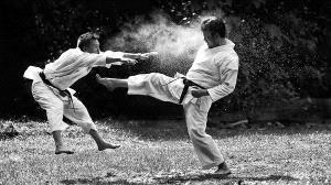DIPC Merit Award e-certificate - Tat Seng Ong (Malaysia)  Karate Kick-Bw