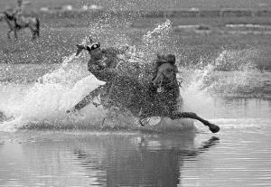 DIPC Bronze Medal - Mingyou Zhang (China) <br /> Splash