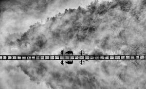 PSA HM Ribbons - Pui-Chung Yee (Singapore) <br /> Lishui Buffalo Cross Bridge